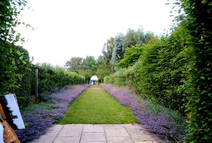 The lavender walk - with a bit of Carolyn!
