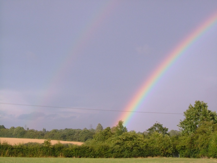 The rainbow at the end of the field!