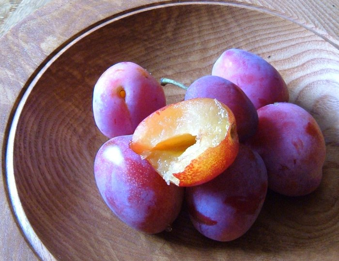 The first-ever, incredibly sweet, Victoria Plums