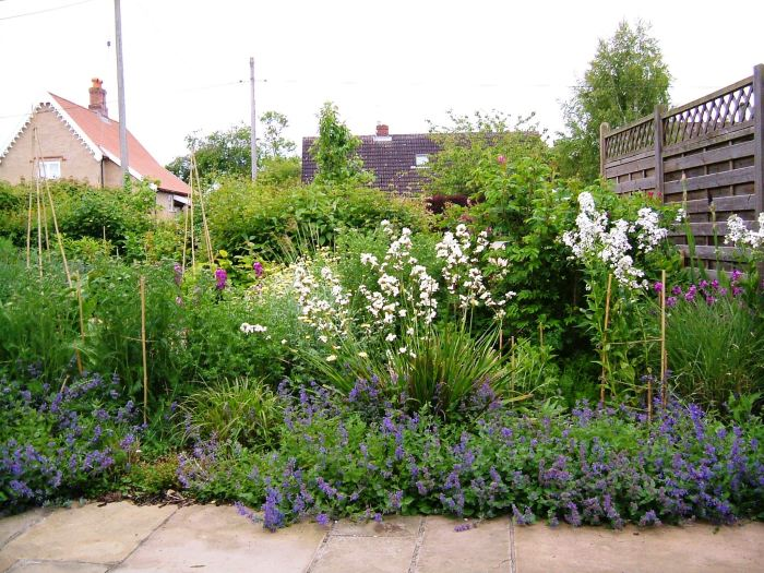 The front garden in May 2013
