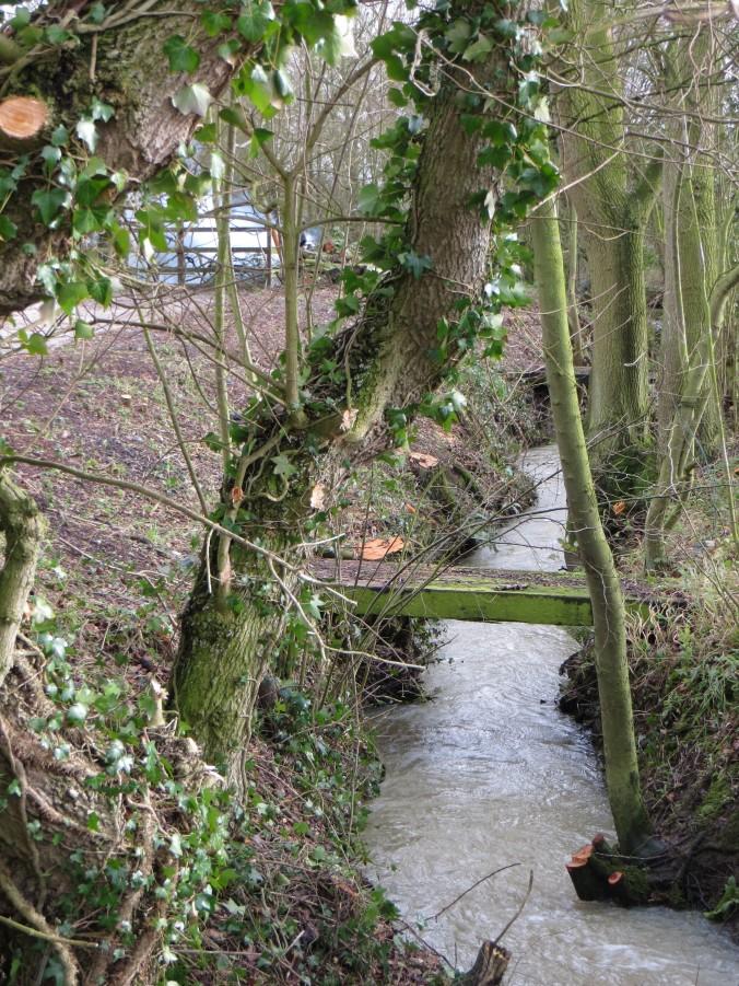 Ditches in Cratfield