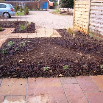The patio garden, March 2011