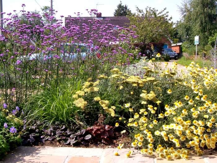 The patio garden, summer 2011