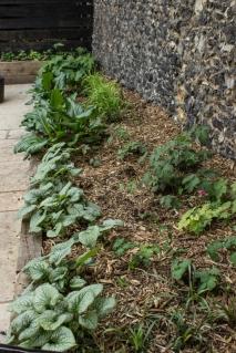 15-6-1 London Garden LR-1785