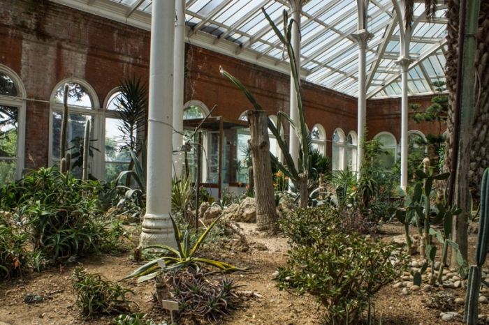 Avery Hill Winter Garden