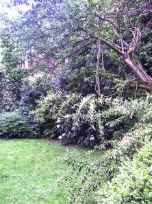 2005 London Garden LR-