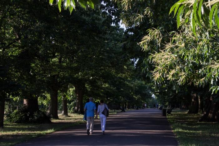 Chestnut Tree Avenue in Greenwich Park