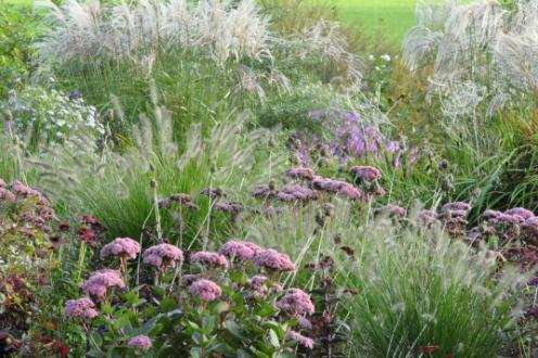 Ton ter Linden garden