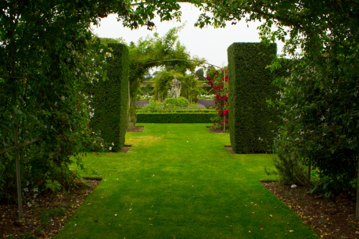 The formal rose garden, Houghton Hall
