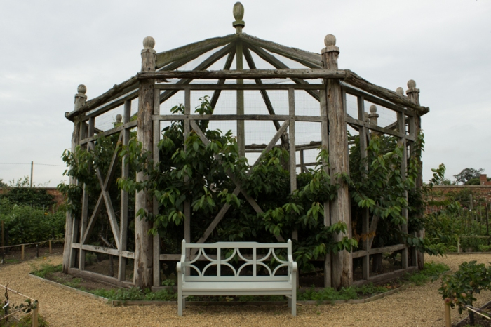 The fruit cage in the Walled Garden