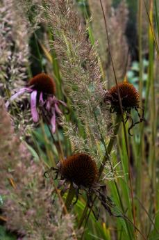 15-10-3 Monk Frith Garden LR-7349