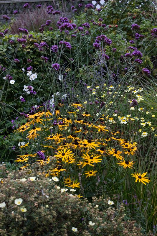 15-10-3 Monk Frith Garden LR-7382