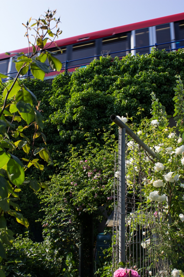 The DLR runs through the Cable Street Community Gardens