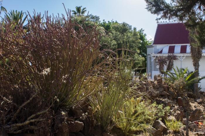 Logan's garden, Matjiesfontein
