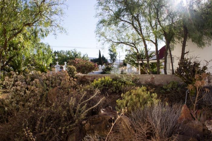 Logan's garden at Matjiesfontein