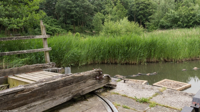 The lock gate at Lavender Pond