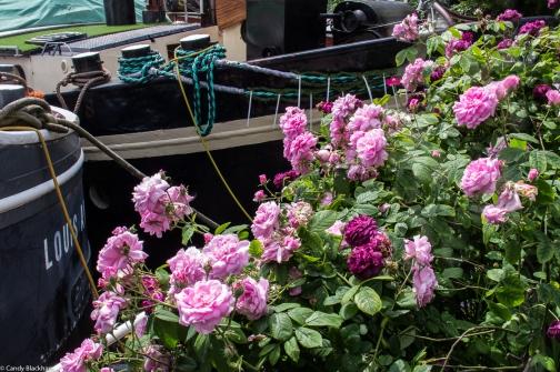 18-6-1 Garden Barges LR--6