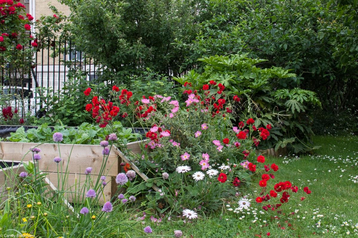 Approach Gardens