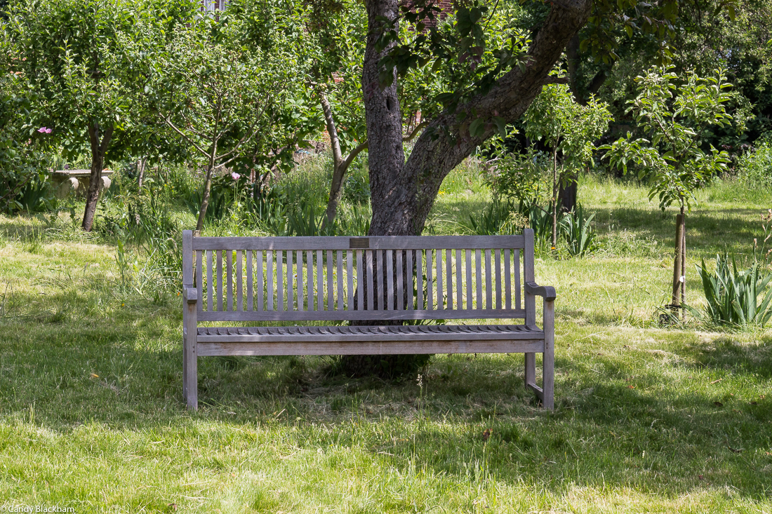 In the orchard at Rainham Hall