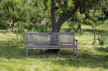 In the orchard at Rainham Hall