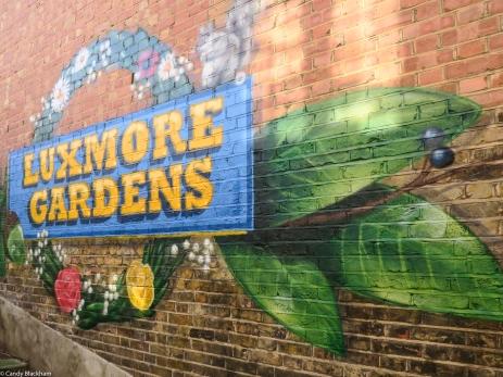 19-4-19 Luxmore Gardens LR-2265