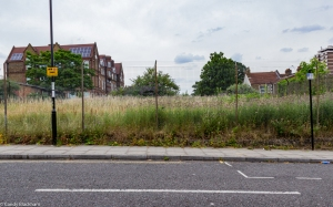 The Deptford Railway Meadow in Friendly Gardens from Oscar Street